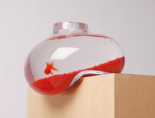 psalt_fishbowl