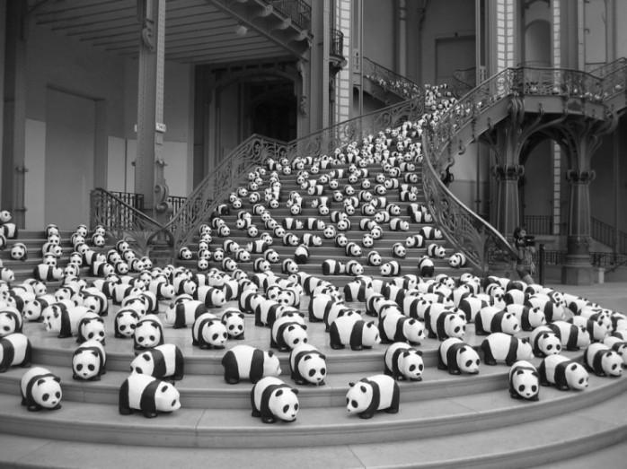 paulo-grangeon-paper-panda-exhibiton-taiwan-43841-750x562