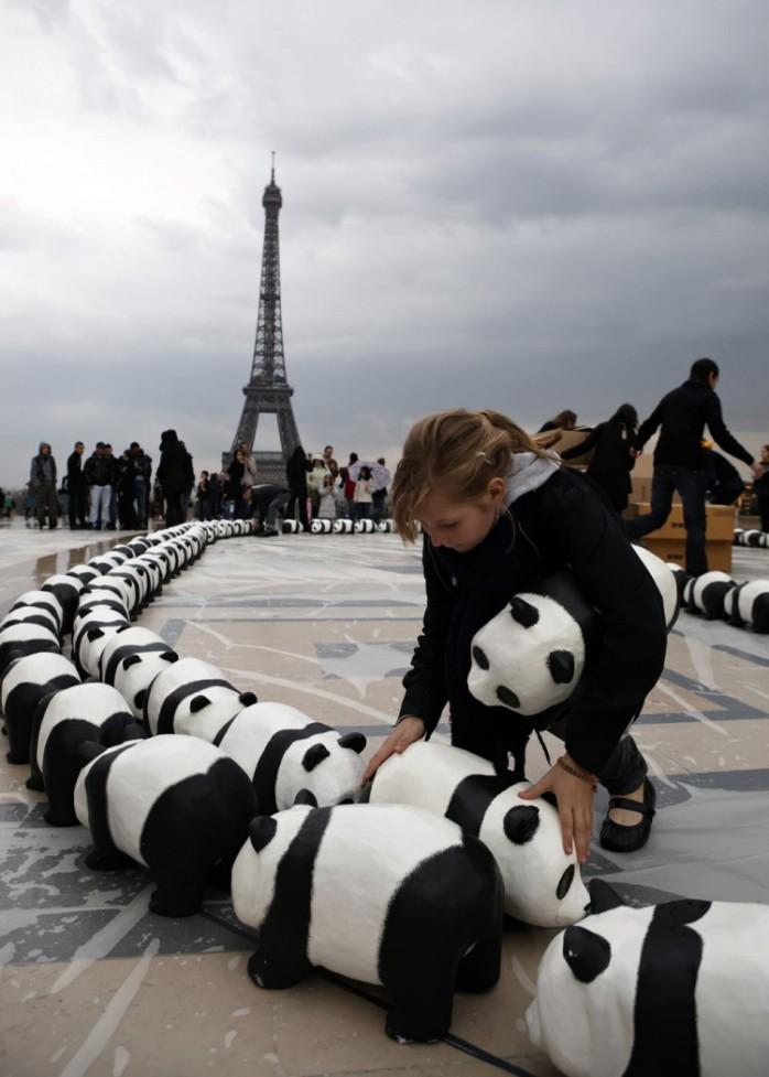 paulo-grangeon-paper-panda-exhibiton-taiwan-69732-750x1050