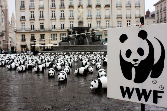 paulo-grangeon-paper-panda-exhibiton-taiwan-75224-750x500