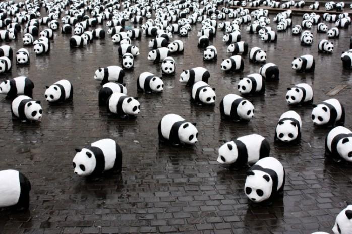paulo-grangeon-paper-panda-exhibiton-taiwan-76056-750x499