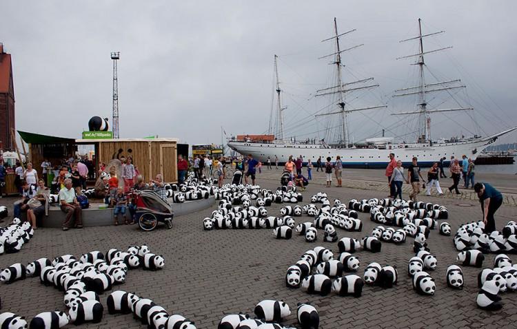 panda invadono le città